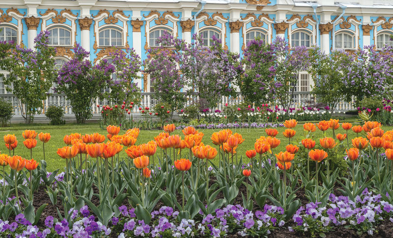 Catherine 24 km imperiału park szlachetności Petersburgu centrum pobyt rodzinny poprzedniego rosyjskiego selo st tsarskoye odwied obrazy stock