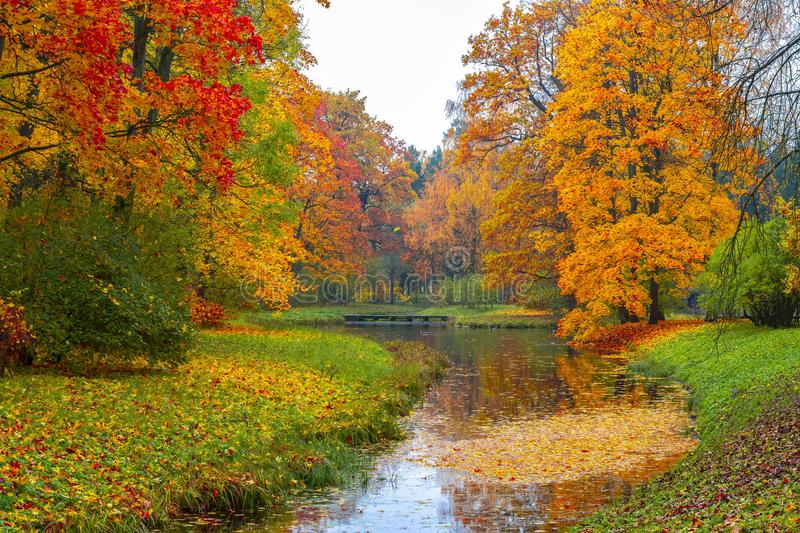 Catherine park in autumn, Tsarskoe Selo Pushkin, Saint Petersburg, Russia stock photos