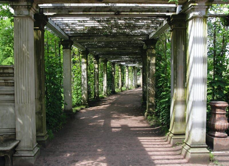 Download Catherine Park Gardens, Tsarskoye Selo (Pushkin) Stock Foto - Afbeelding bestaande uit gras, gebladerte: 10781560