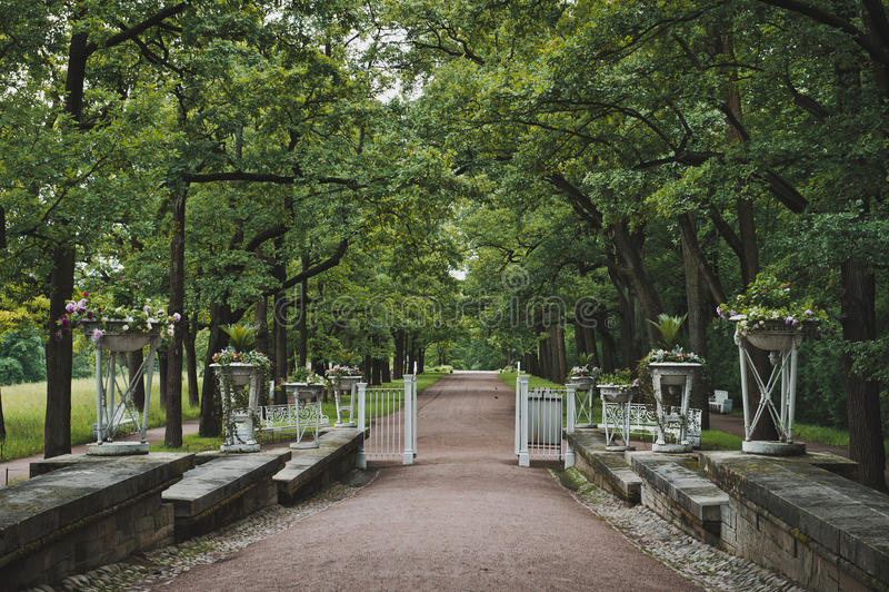 Catherine Park i Tsarskoye Selo 1045 arkivfoto