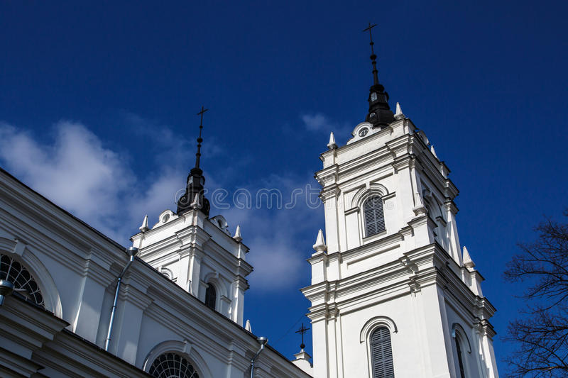 Catholic Cathedral in Ludza royalty free stock images