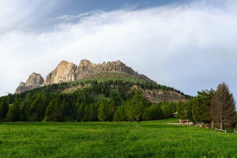 Catinaccio断层块看法从Costalunga通行证的 r 免版税库存图片