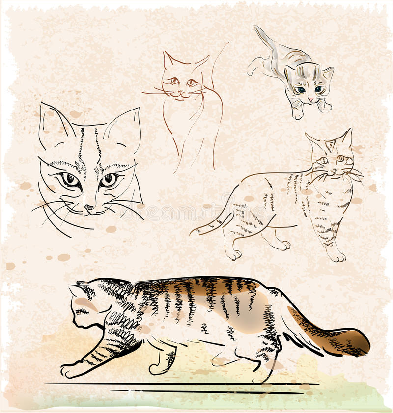 Download Cats stock vector. Illustration of purr, cute, outline - 19869259