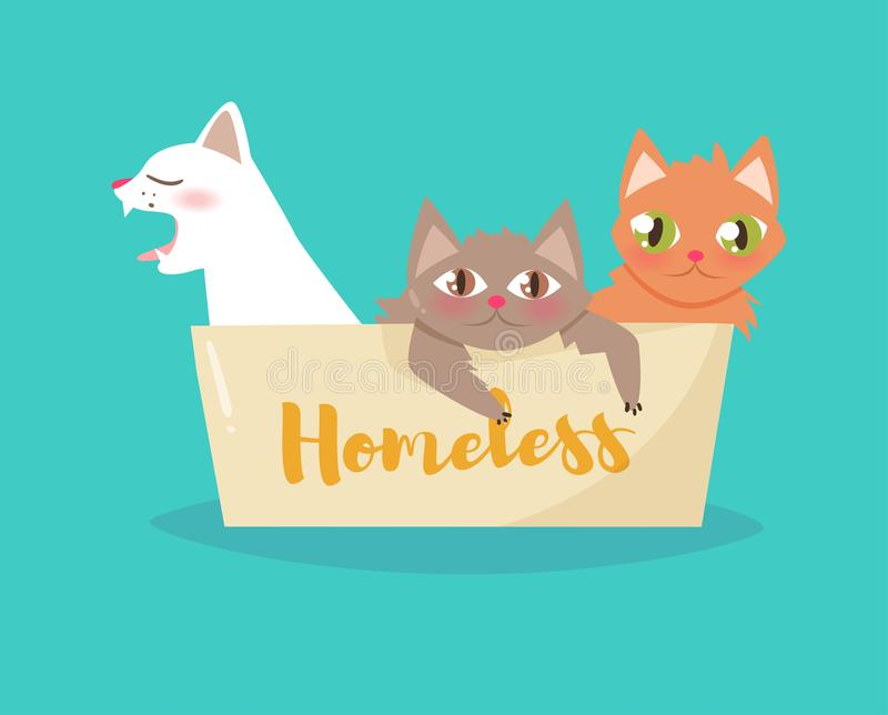 Cats in a cardboard box. Vector. Cartoon. art on white background. Flat royalty free illustration
