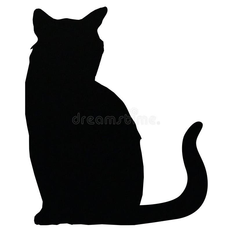 Cats cat pet cute animals. Cat cats animal animals cute loyal black white animals mammals mammal eyes feline felines royalty free illustration