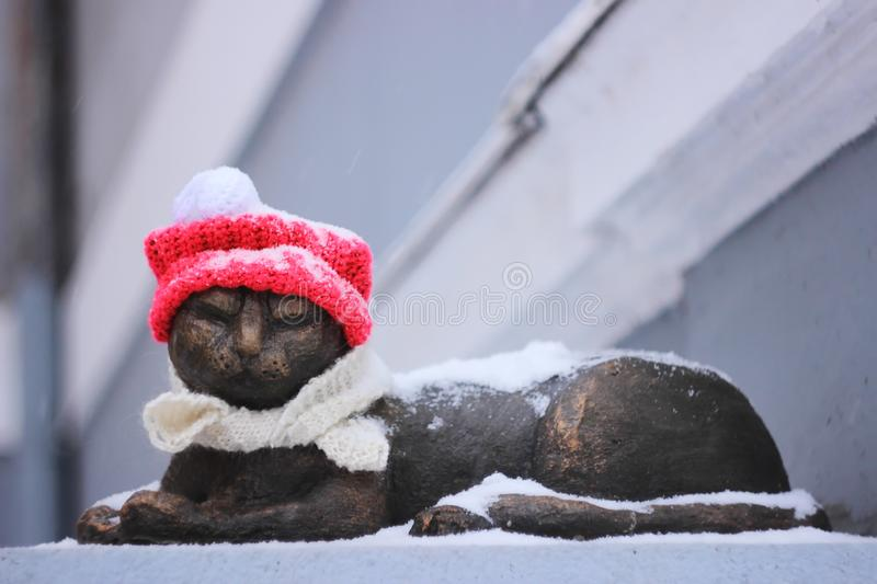 The cats from the cold metal, too, is an act of kindness to homeless animals or people. Warm clothes are put on the monument to the cat snow falls and her warm royalty free stock images