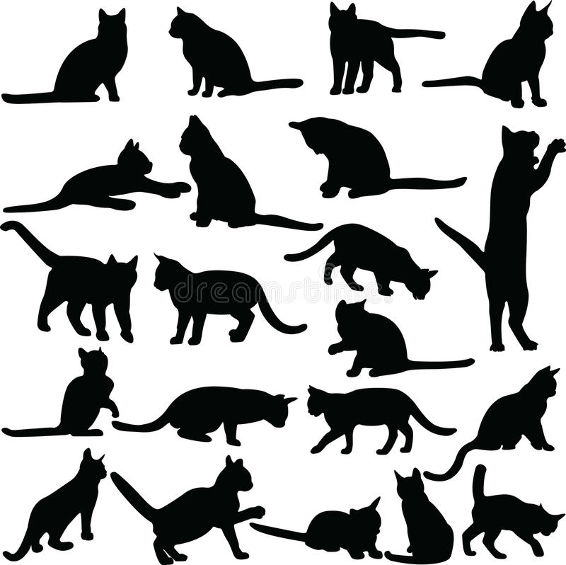 Cats collection. Cats vector illustrations on white background isolated vector illustration