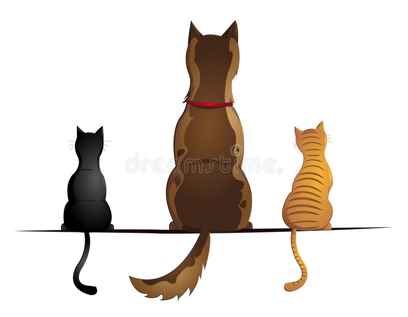 Cats And Dog Royalty Free Stock Photography