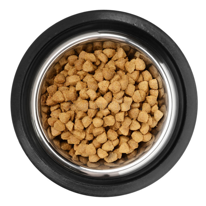 Cats and dogs food. Cats and dogs dry food in the stainless steel bowl royalty free stock images