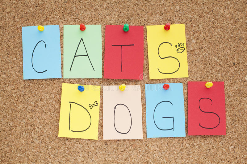 Cats and Dogs. Note on bulletin board royalty free stock photo