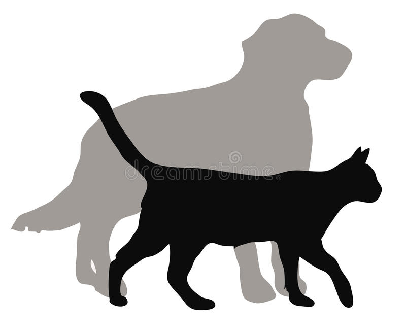 Cats and dogs, vector illustrations. Vector illustrations of domestic cats and dogs
