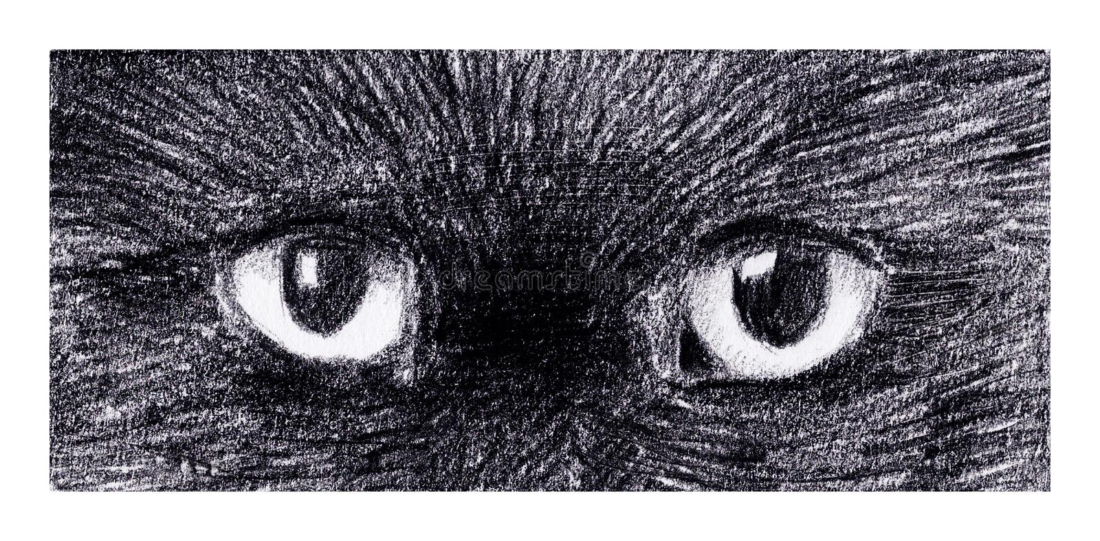 Download Cats Eyes Stock Images - Image: 30354074