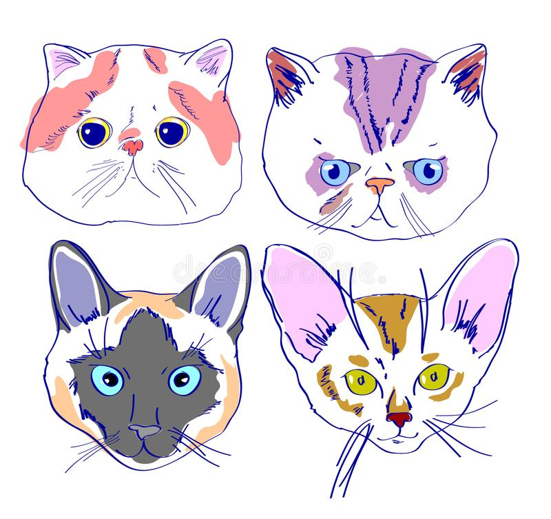 Cats Faces Drawing In Cartoon Style Stock Illustration