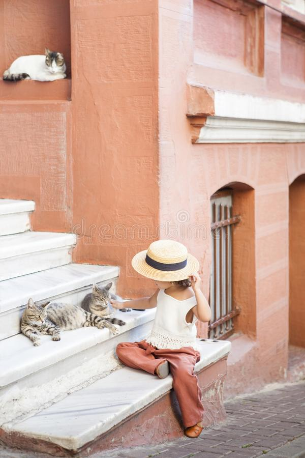 Cats and a Girl royalty free stock photography