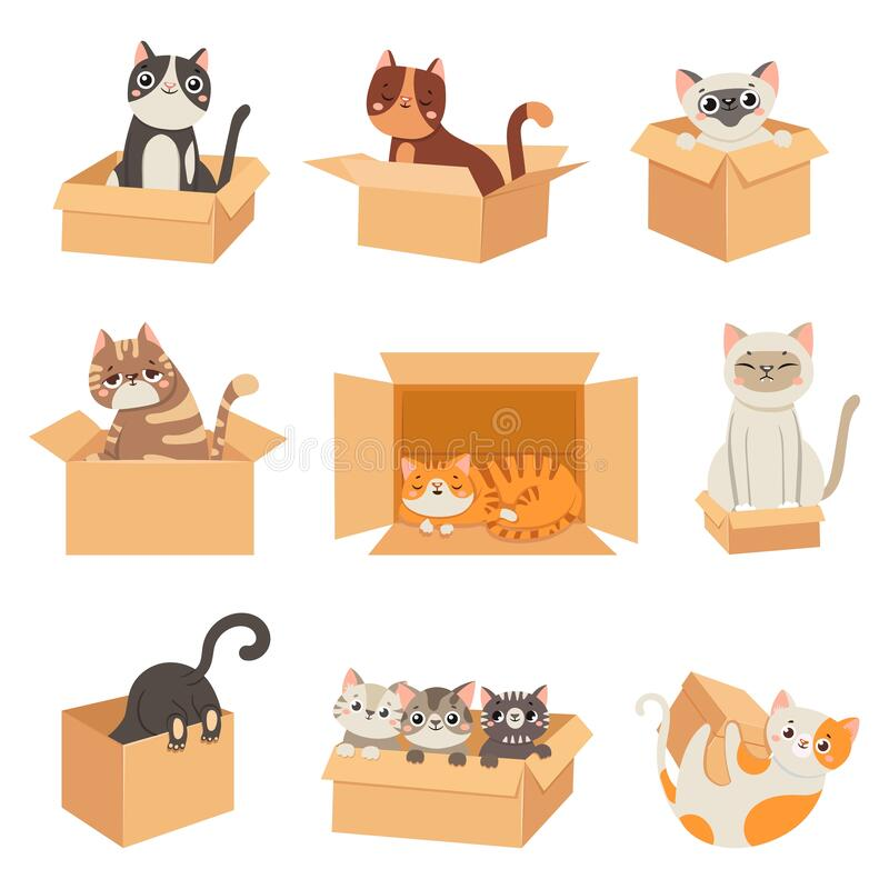 Free Cats In Boxes. Cute Stickers With Cat Sitting, Sleeping And Playing In Cardboard Box. Funny Hiding Kittens. Adopt Stock Photos - 199136973