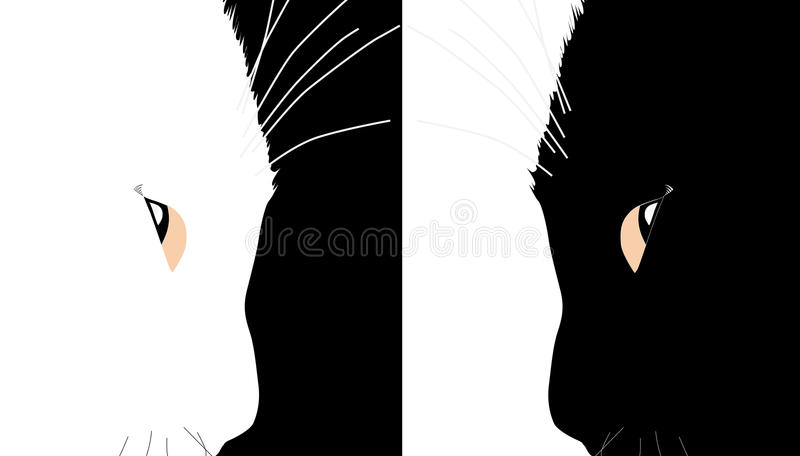 Cats silhouettes royalty free illustration