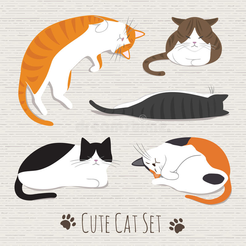Cats Sleep Collection royalty free stock images
