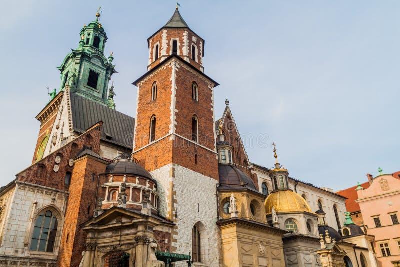 Cattedrale al castello di Wawel a Cracovia, Pola fotografia stock