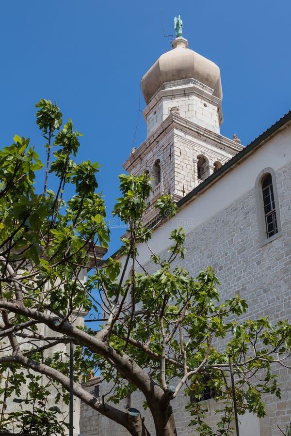 Cattedrale in città Krk, isola Krk, Croazia fotografia stock libera da diritti