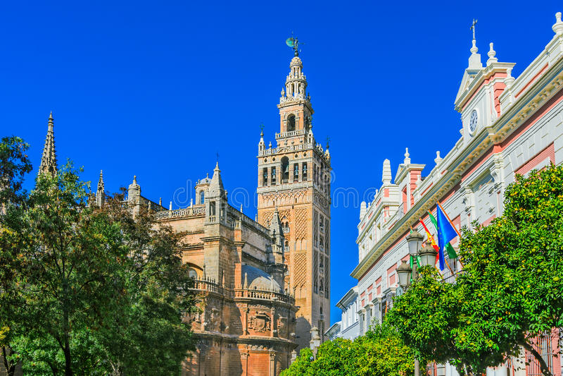 Cattedrale de Santa Maria de la Sede con il campanile di Giralda, fotografia stock