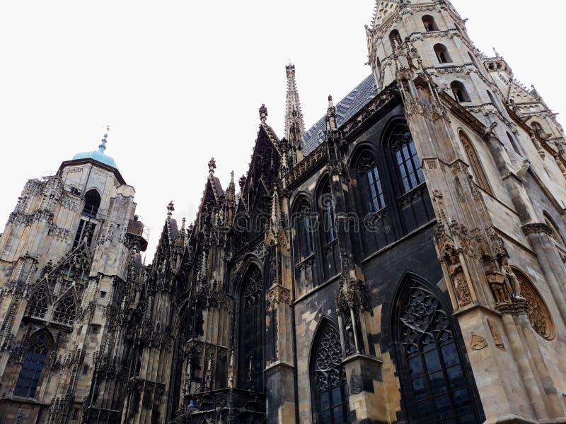 Cattedrale del ` s di St Stephen, la chiesa di madre di Roman Catholic Archdiocese di Vienna fotografia stock