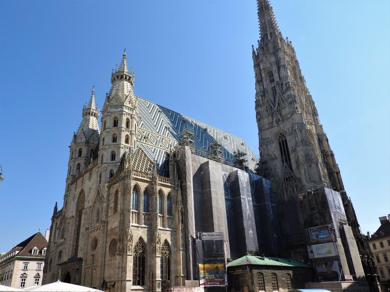 Cattedrale del ` s di St Stephen a Vienna, Austria in un bello giorno di autunno immagini stock libere da diritti