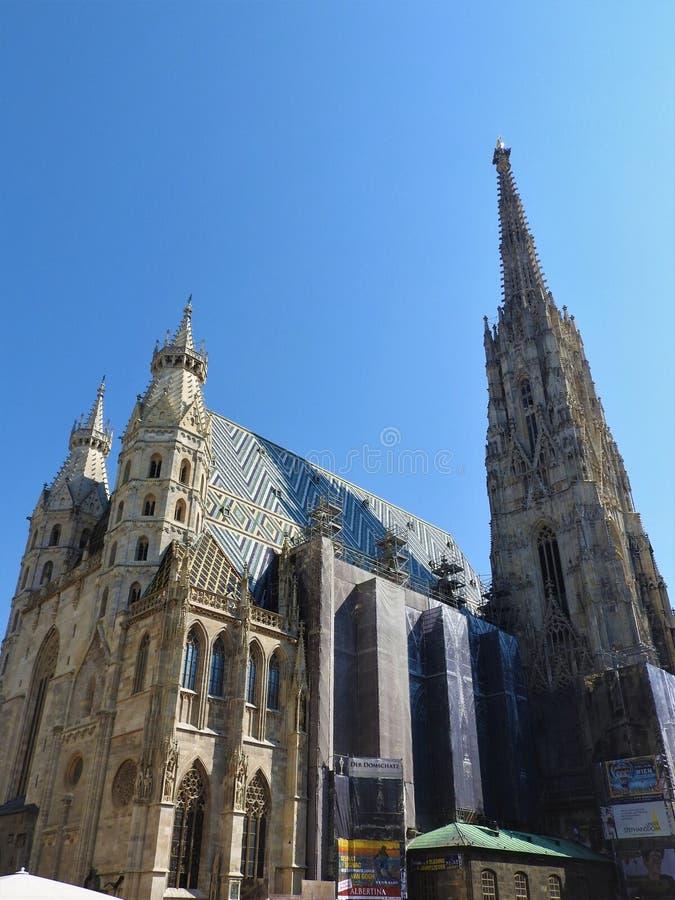 Cattedrale del ` s di St Stephen a Vienna, Austria in un bello giorno di autunno fotografia stock libera da diritti