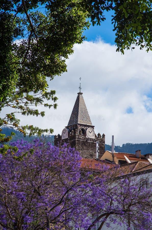 Cattedrale della nostra signora del presupposto - Funchal, Madera immagine stock libera da diritti