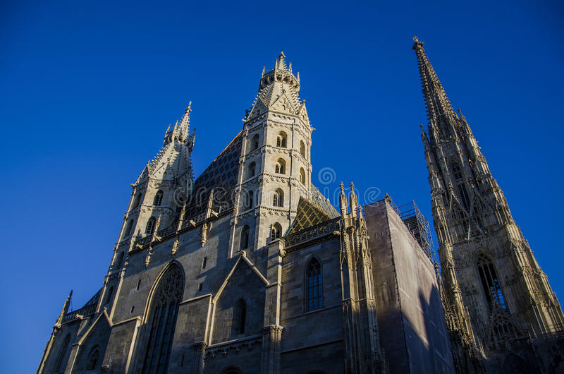 Cattedrale della st Stephen a Vienna immagine stock libera da diritti