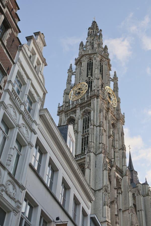 Cattedrale di Anversa immagine stock