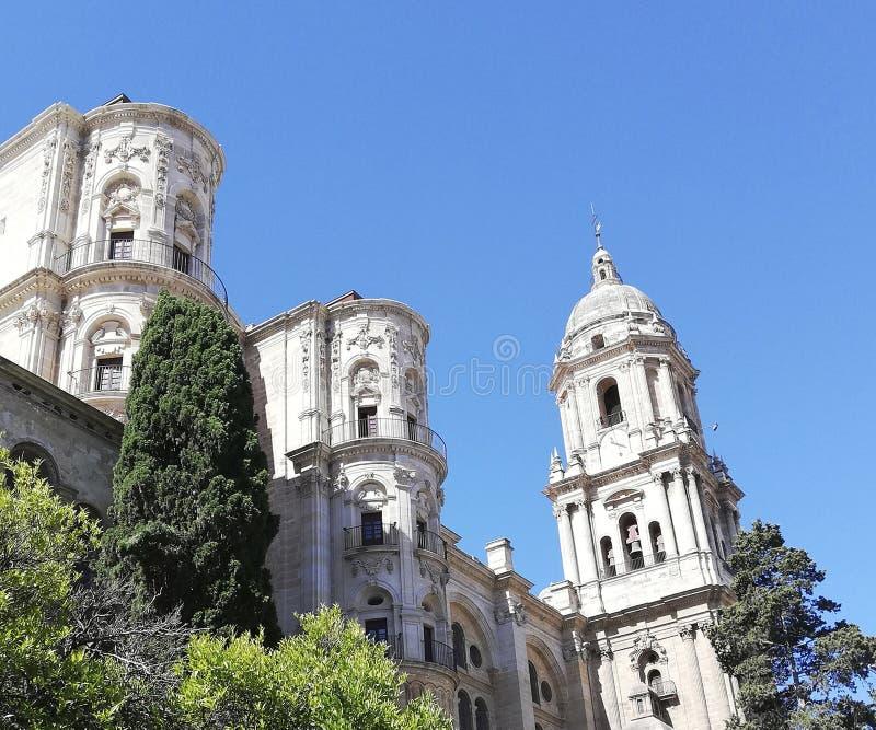 Cattedrale di Catolic con fogliame naturale fotografia stock libera da diritti