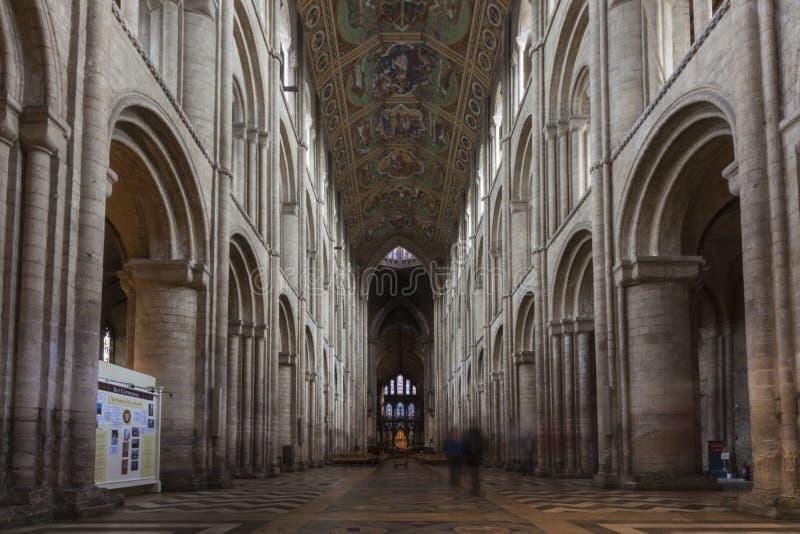 Cattedrale di Ely fotografie stock