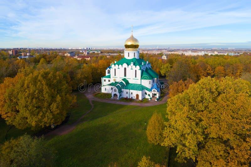 Cattedrale di Fedorovsky in Tsarskoye Selo, colpo dorato di autunno da quadcopter fotografia stock libera da diritti