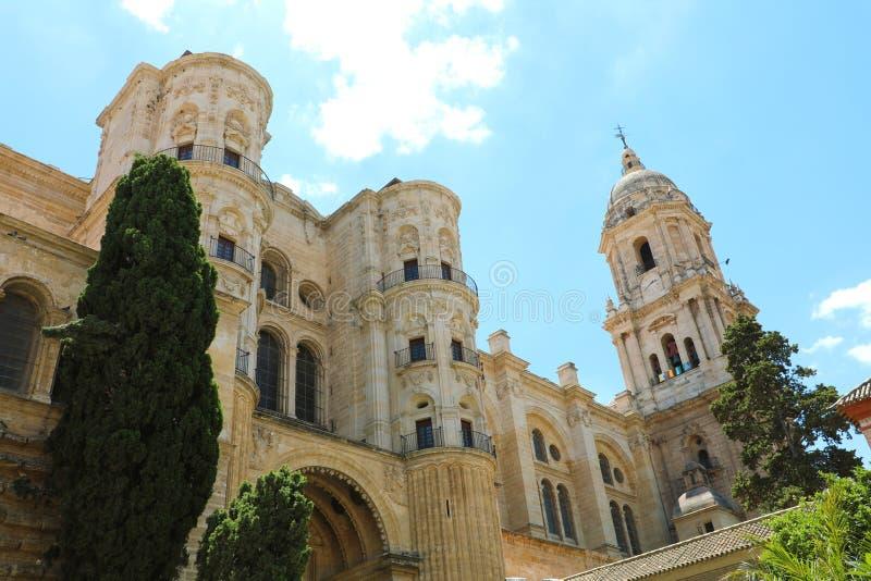 Cattedrale di Malaga con il campanile, Malaga, Andalusia, Spagna fotografia stock libera da diritti