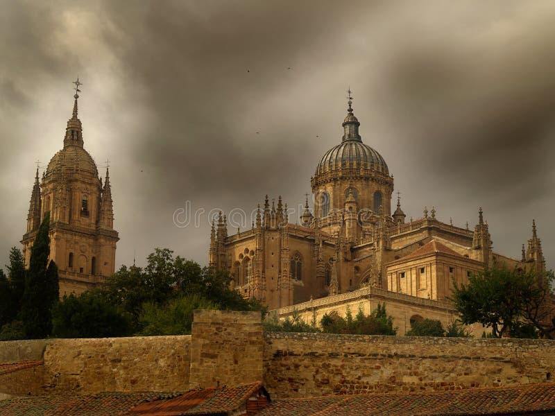 Cattedrale di Salamanca fotografia stock libera da diritti