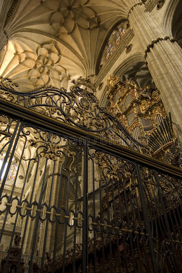Download Cattedrale Di Salamanca. La Spagna Immagine Stock - Immagine di choir, antico: 3144795