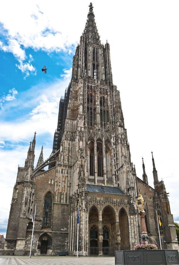 Cattedrale di Ulm fotografia stock