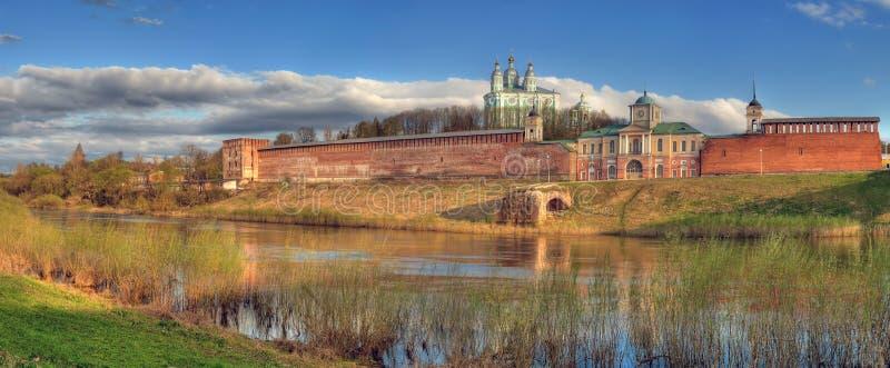 Cattedrale e fortificazione dietro il fiume fotografia stock libera da diritti