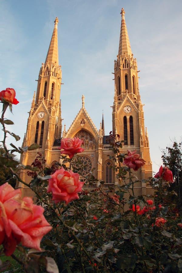 Cattedrale gemellare della guglia fotografie stock