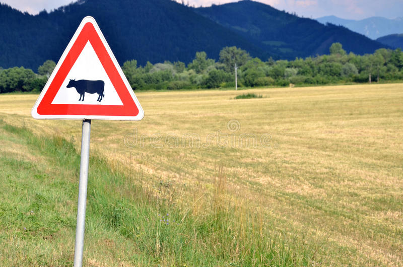 Cattle crossing traffic sign next to empty field royalty free stock photos