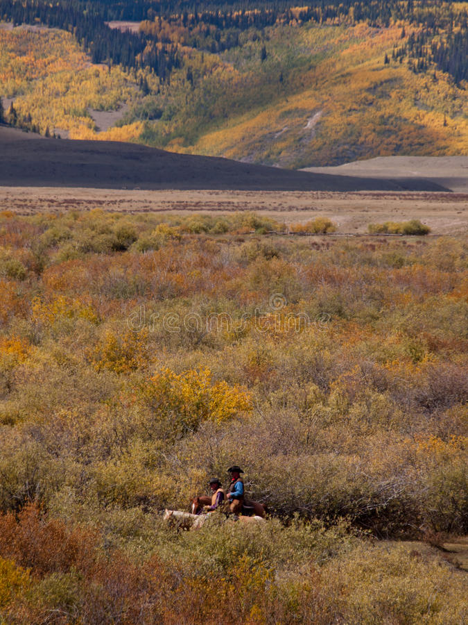 Download Cattle Drive Editorial Stock Image - Image: 42045724