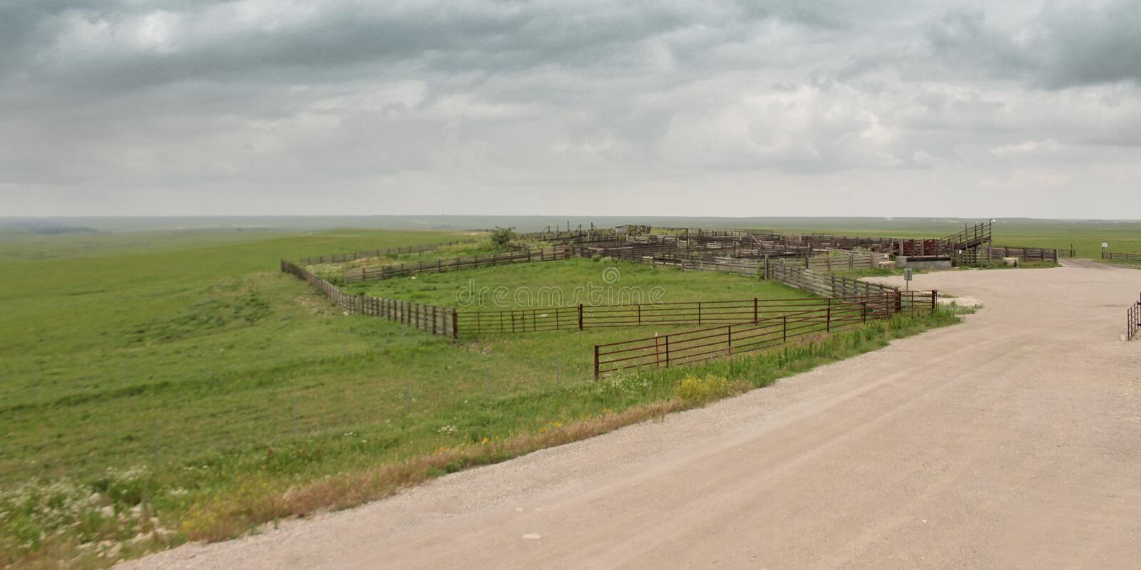 Cattle pens on stormy day. Cattle pens stormy day herd herding working cow cows farming agriculture scenic prarie cloudy overcast country vista horizion open stock image