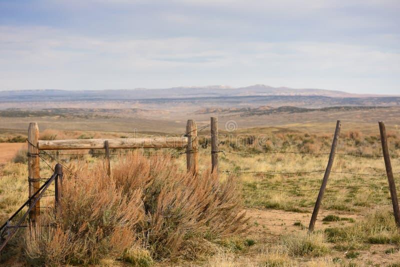 Cattleguard e cerca Western Scene fotos de stock