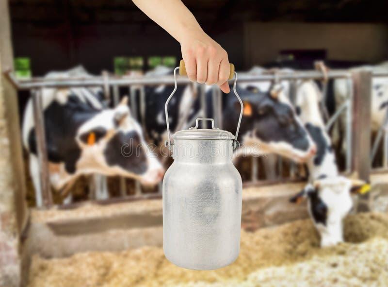 Cattura della lattaia fotografie stock libere da diritti