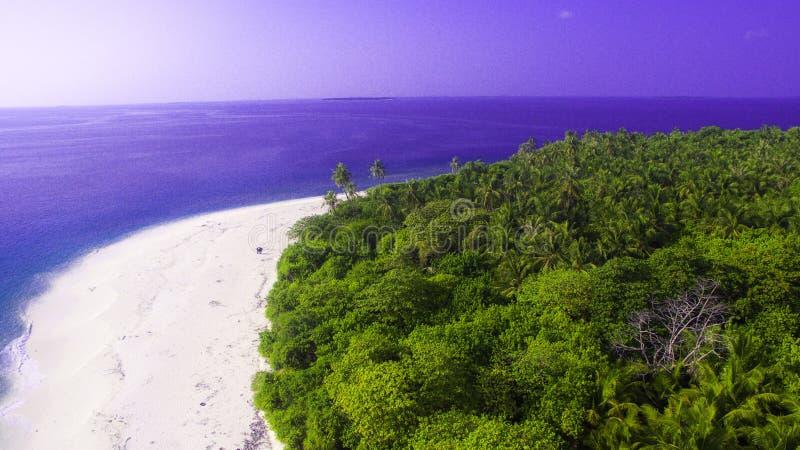 Cattura delle spiagge in Maldive fotografie stock libere da diritti