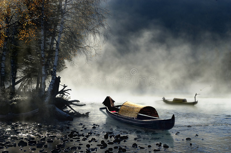 Cattura nebbiosa dei pesci di mattina immagine stock libera da diritti
