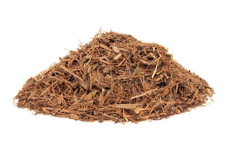 Catuaba Bark Herb stock photos