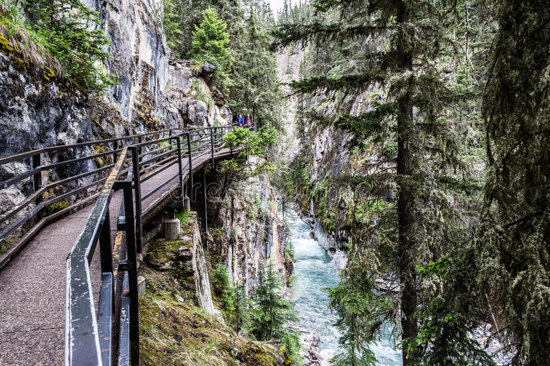 Catwalks over the Johnston Canyon Banff. Catwalk path near the river in the Johnston Canyon in Banff National Park. beautiful icy turquoise water from the river stock photos