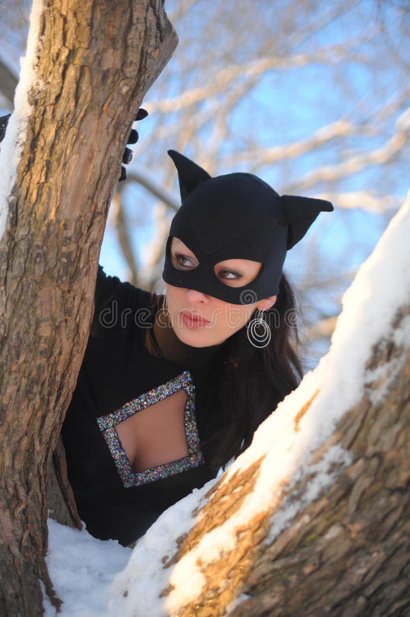 Catwoman photographie stock