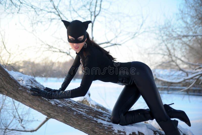 catwoman στοκ φωτογραφία με δικαίωμα ελεύθερης χρήσης